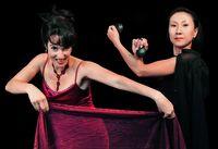 Carmen Oper légère